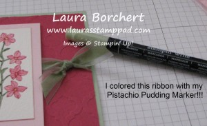 Color Ribbon with Markers, www.LaurasStampPad.com