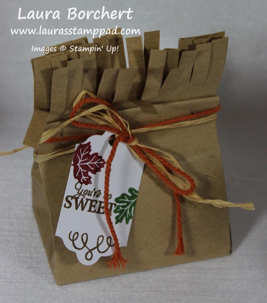Mini Lunch Bag, www.LaurasStampPad.com