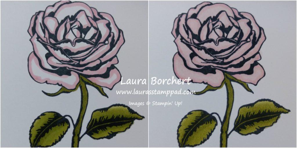 Pink Pirouette Rose, www.LaurasStampPad.com