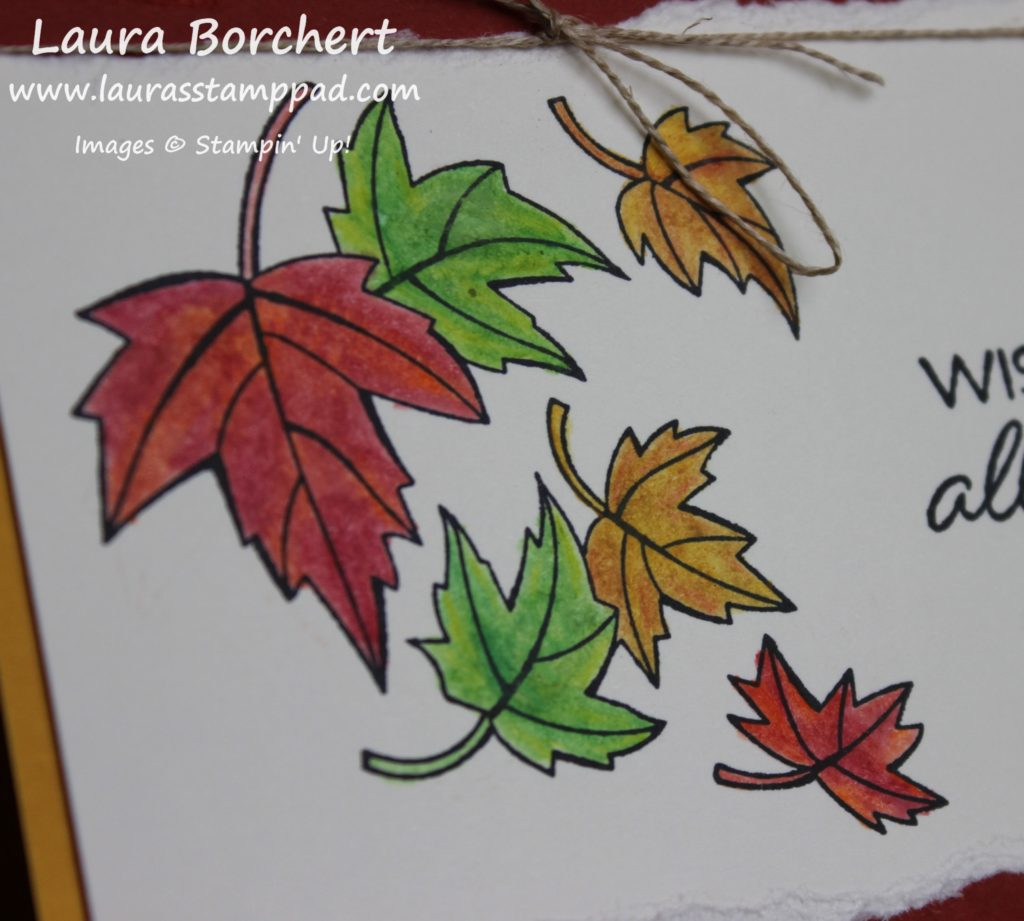 Blended Seasons Fall Leaves, www.LaurasStampPad.com
