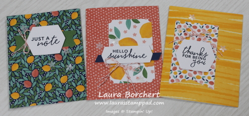 All Inclusive At Home Card Kit, www.LaurasStampPad.com
