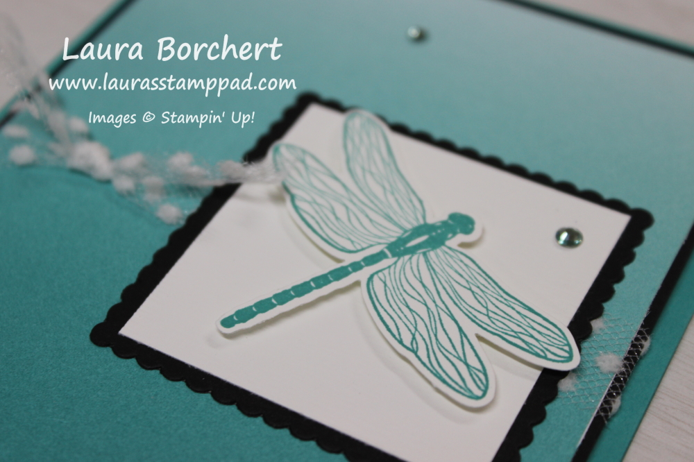 Stampin Up Dragonfly, www.LaurasStampPad.com